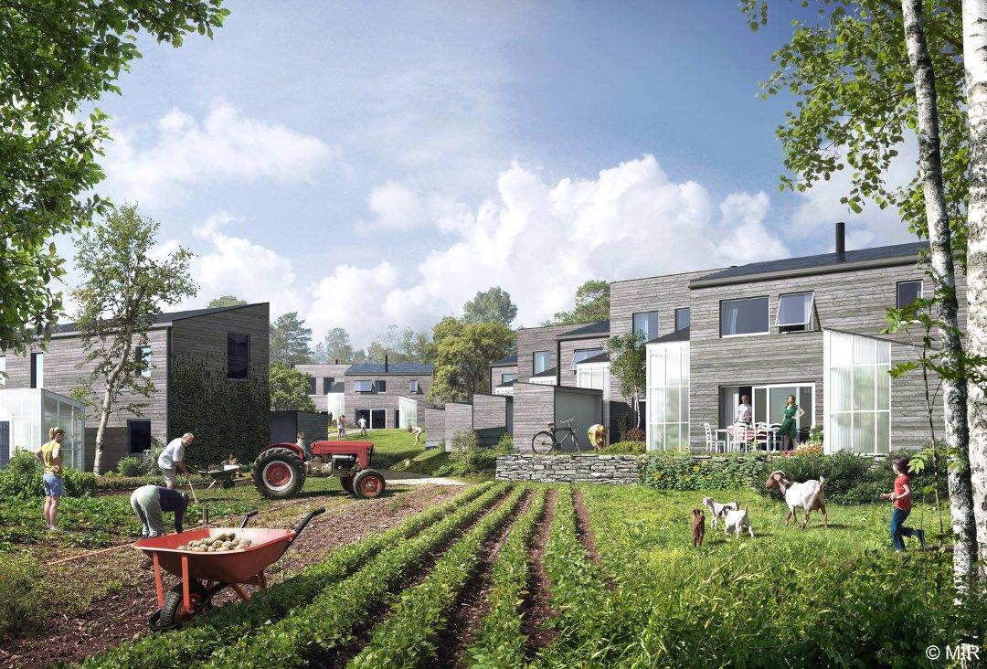 En økolandsby på «Statoil-tomta» tror jeg kunne bli et fantastisk prosjekt