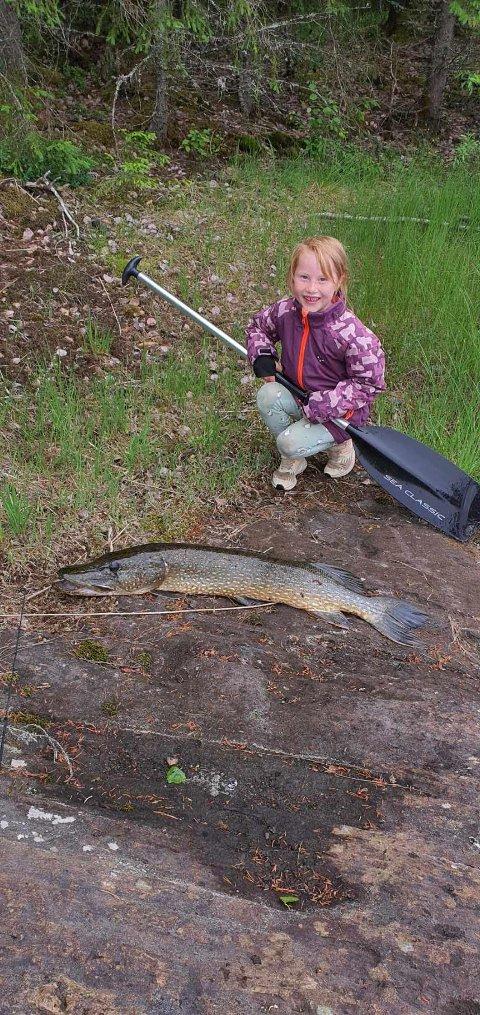 Gjedde: 7 år gamle Eline Torvik Tønsberg fikk nylig denne gjedda på kroken.