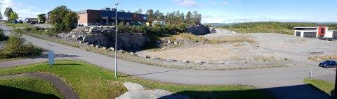 BYGGEVARE HER: Coop vil ha et byggevarehus her på Fokserød. Kommunen har sagt ja til en utvidelse, slik at de kan få en drive in-avdeling, men fylkeskommunen, som har fått med seg Larvik og Tønsberg på laget, sier nei. Til venstre i bildet sees Coop OBS.