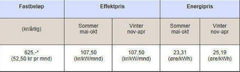 REGNINGEN: Her ser du prøveavregningen fra Fredrikstad EnergiNett AS etter at Håkon Beckman brukte hytta i én dag i oktober. Totalsummen var 564,03 kroner.