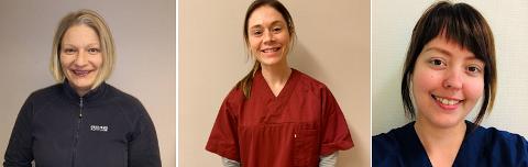 Hverdagsrehabiliteringsteamet i Vestvågøy kommune består av sykepleier Tone-Lill Holand Arntsen, fysioterapeut Ane Klausen Nordstrand og ergoterapeut Marit Kristin Kjærstad.