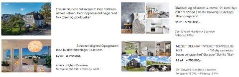 Informasjonen fra FINN-annonsen skal gi boligkjøper et grunnlag for å vurdere om man vil gå på boligvisning eller ikke