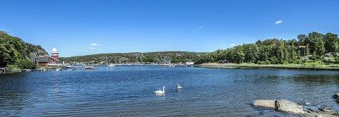 Husebukta:  Her er det snakk om å bygge 40 hytter i sjøkanten på «rikingøya» Hankø. Striden rundt hyttene har pågått i ti år.                                                                    Foto Geir A.Carlsson