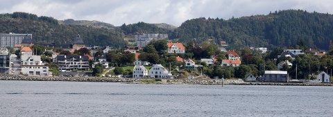 RENERE: I en ny rapport som Norsk institutt for vannforskning (NIVA) har skrevet på oppdrag fra Miljødirektoratet, kommer det frem at de lokale purpursneglene i Karmsundet er friskmeldt for første gang siden målingene av miljøgiften TBT startet i 1991.