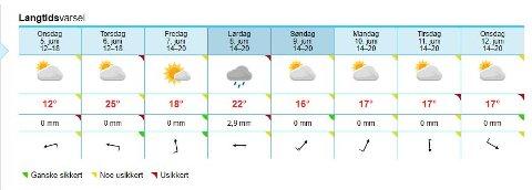 I Ski meldes det 25 grader på torsdag. Foto: yr.no
