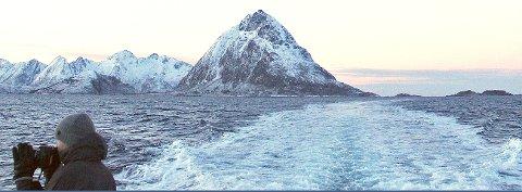 Mye å ta bilde av for Frederik mens hurtigbåten tar oss bort fra Tinden som tårner i bakgrunnen. (Foto: Ståle Schultz)