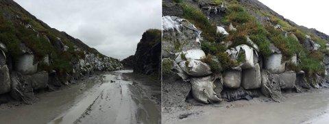 Eksempler på områder der massene har seget ned/utover og deler har havnet utenfor membran. Bildene er fra vestsiden av deponiet.