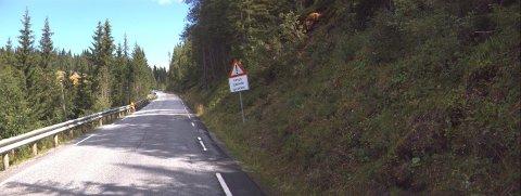 Risbakkene på fylkesveg 27 Venabygdsvegen i Ringebu skal utbedres for 16 millioner kroner.