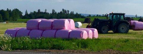 ROSA: Bøndene som har rosa høyballer støtter Brystkreftforeningen med 30 kroner for hver ball. Det har denne bonden fra Nybakk i Ullensaker gjort. FOTO: KJELL AASUM