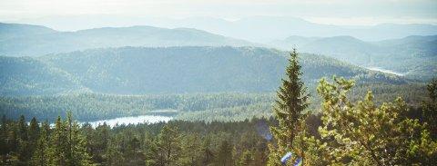 I naturen: Ukas tur går fra Jondalen og mot Selslinatten. Foto: Eva J. Johnsen