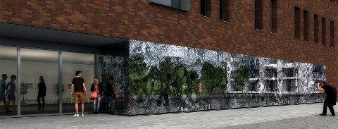 FLUEHJERNE: Kunstverket er basert på et foto av en fluehjerne, og skal pryde fasaden på det nye MH-bygget i Tromsø. Illustrasjon: Beret Aksnes og Vegar Moen