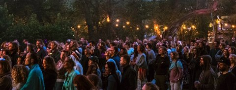 LYSE NETTER: Alt ligger til rette for å skape god festivalstemning i hagen på Alby.