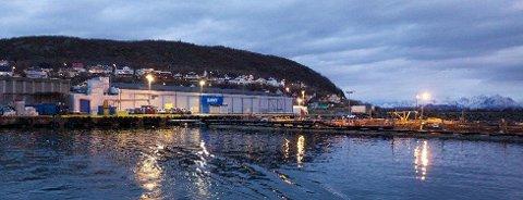 Lerøy Auroras anlegg i Skjervøy havn. Foto: Ola Solvang
