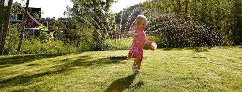 Vanning av plen er ikke tillatt i sommer.