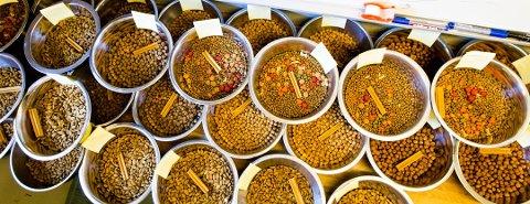 Det er funnet salmonella i en type hundemat som selges i seks butikker på Østlandet. Fôret blir nå trukket tilbake fra markedet, opplyser Mattilsynet.