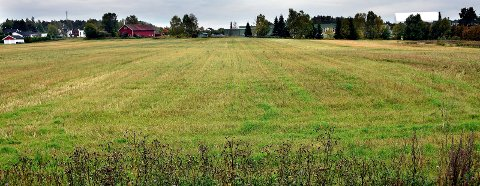 UNGDOMSSKOLE: Denne tomta på 46 dekar som i dag er dyrket mark, har Sarpsborg kommune sikret seg for 27 millioner kroner til bruk til ny ungdomsskole. Greåker videregående skole ligger i bakgrunnen midt på bildet. Nå skal politikerne avgjøre om kjøpet skal gjennomføres.