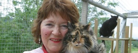 Avisa Nordhordland har skrive fleire saker om Kari Medaas sitt kattepensjonat i Alversund. Her frå besøk i 2007. Arkivfoto
