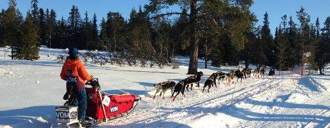 NY ETAPPE: Nina Skramstad på vei ut etter åtte timers hvile. Foto: Didrik Lindberg Sand.