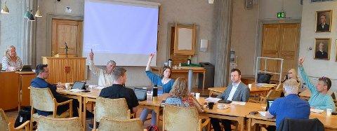 AVSTEMNINGEN: Bare tre representanter stemte mot å legge ned plasser på Sætre.  Her er avstemningen i formannskapet: Fra venstre Lillian Skjærvik (Ap), Ingvar Midthun (Ap), Arnfinn Uthus (Ap), Magnus Stenseth (Ap), Ida Kristine Teien (Sp), Eldri Svisdal (SV), Yngve Sætre (H), Dag Martin Bakken (Frp) og Gjermund Gjestvang (MDG). I bakgrunnen sitter Aino Kristiansen, sjef for pleie, rehabilitering og omsorg i Elverum kommune.