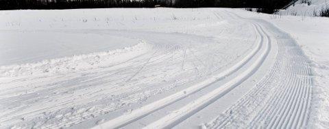 MANGLER I KYSTNÆRE STRØK: Mange namdalinger må belage seg på å kjøre noen mil for å finne slike flotte skiløyper denne jula. Og værprognosene tyder ikke på bedring i dagene som kommer.. FOTO: BJØRN TORE NESS