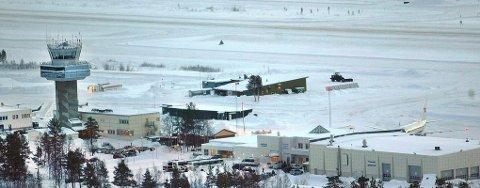 MÅTTE AVLIVES: Nesten hvert år forviller elger seg inn på Bardufoss Lufthavn.