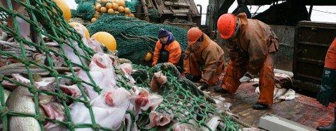 Vestfjorden er gyteområde for den felles norsk-russiske torskestammen. Nå advarer russiske fiskeorganisasjoner mot oljeboring i området. Bildet er fra en russisk tråler i Barentshavet.