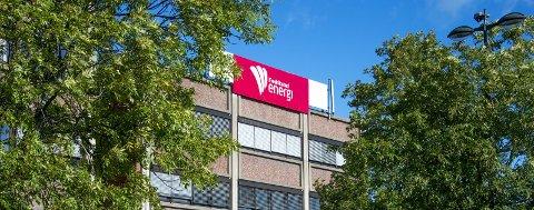 UNDER LUPEN: Fredrikstad Energi gjennomgår for første gang en eierskapskontroll.  Arkivfoto: Geir A. Carlsson