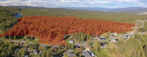 BYGGES UT: Rødshøgda-feltet - her markert med rødt, ligger nær Kjennerudvannet - et par kilometer øst for Kongsberg sentrum.