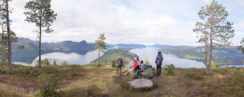 UTSIKT: Elevene fra Molde friluftsskole fikk seg litt av en naturopplevelse på Nordmøre. Denne gruppa gikk opp nær Hals og fikk utsikt over Ålvundfjorden mot nord.