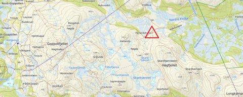 I dette området (se rød trekant) skal øyenvitner ha observert ulv til angrep på sau.
