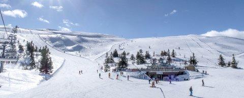 Trysil er landets største alpinanlegg. I løpet av forrige sesong solgte de over én million dagspass. FOTO: Halvard Alvik / NTB scanpix