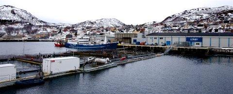 UTSATT: Lerøys lakseslakteri ligger i Skjervøy havn. Utenfor slakteriet er det merder der laksen som skal slaktes oppholder seg. Mattilsynet frykter utslipp som kan påvirke vannkvaliteten, og har reist innsigelse mot kommunens nye sentrumsplan.
