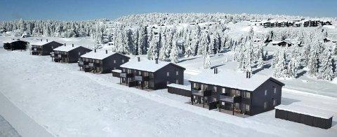 Ettertraktet: Leiligheter i fjellet er populært, og første halvparten av byggetrinn i Sjusjøparken ble solgt på få dager.Illustrasjon