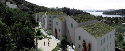 STRIDEN FORTSETTER: Siste ord er på ingen måte sagt om det omstridte boligprosjektet Dronninggård på Sundvollen.