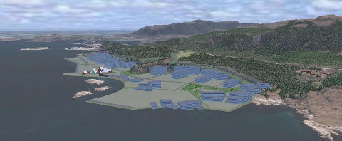 Bolgneset næringsområde skal tilrettelegge for etablering av havteknologisenter, og utvikle sjønære arealer. Risikoen er stor, mener Tore Larssen.