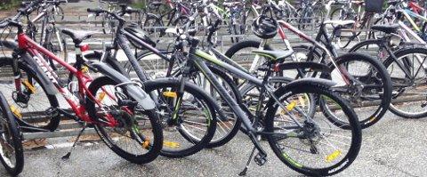 MANGE SYKLER: At stadig flere bruker sykkelen som framkomstmiddel vises blant annet igjen ved sykkelskuret på Haraldsvang ungdomsskole. FOTO: JUNE HUGDAHL