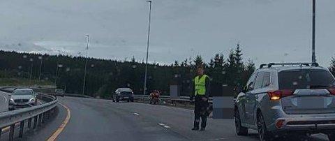 MØTTE DYR: Motorsyklisten måtte svinge unna for et rådyr. Det endte med at motorsykkelen veltet i veibanen.