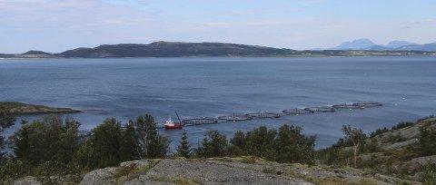 Vil utvide: Nova Sea vil øke biomassen på oppdrettsanlegg i Stokkasjøen. Dette bildet er av Nova Seas anlegg ved Forvik i Vevelstad.  Foto: Hildegunn Nielsen Tjøsvoll