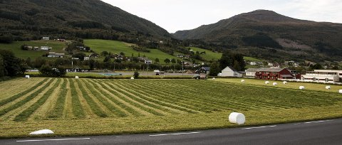Norge og verden bør sette seg som mål at småbruksdrift blir økonomisk bærekraftig, skriver lederen i Norsk Bonde- og Småbrukarlag. Bildet er fra Batnfjordsøra.