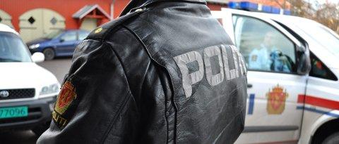 BESLAG: Politiet inndro to håndvåpen med ammunisjon og mange voldsvåpen fra hortensmannen i 40-årene.