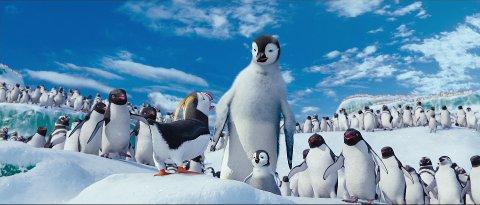 Pingvin-moro: Pingvinen kan ikke synge, men fører gjerne an i dansen. Foto: Filmweb / Warner Bros