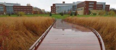 HEVER STIEN: En slik boardwalk er tenkt langs elva mot Mølen.