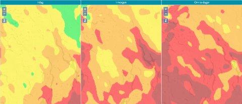FARE: Prognosen viser stor skogbrannfare i store deler av Vestoppland inn mot helgen. Skjermbildet er tatt fra skogbrannfare.met.no tirsdag 31. august.