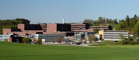 CAMPUS ÅS: Byggpartner har hatt ansvaret for isolering og tekking av takene på det nye veterinærbygget ved Norges miljø- og biovitenskaplige universitet på Ås.