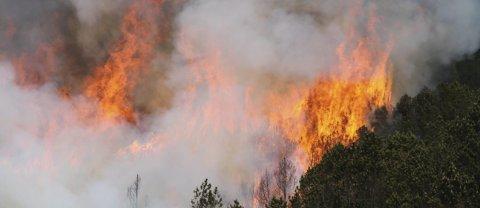 OPPHEVET: Farevarselet for skogbrann er nå opphevet. Foto: Tor Andre Johannessen / NTB scanpix