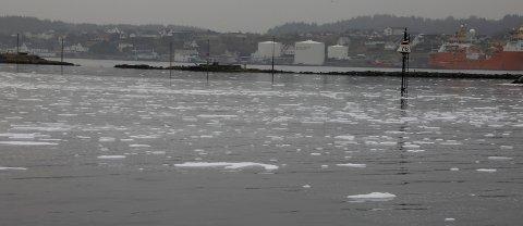 Haugesund 1604 2018 MAsse skum i Karmsundet mandag formiddag, Ingen fare, dette er skum. Ufarlig skum sier Aibel