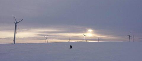 EUROPAS BESTE: Helt siden starten har vindparken på Raggovidda blitt kåret til landets beste. De fantastiske vindforholdene gir håp om industriutbygging om noen år. Alle foto: Berlevåg kommune