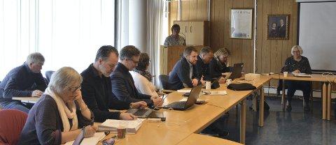 Bredband: Kommunestyret i Nord-Aurdal skal ta stilling til kommunal støtte til bredbåndsutbygging.