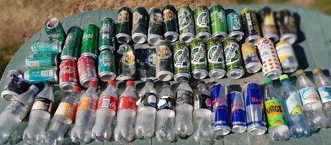 MANGE: Disse flaskene ble funnet på en 1,5 kilometer lang strekning langs Sigdalsveien.