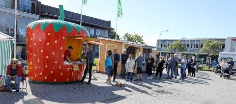 LANG KØ: Mange ville sikre seg de første jordbærene fra Jelsa. Køen vokste kontinuerlig da Haugesunds Avis besøkte torghandelen i Åkrakrossen.